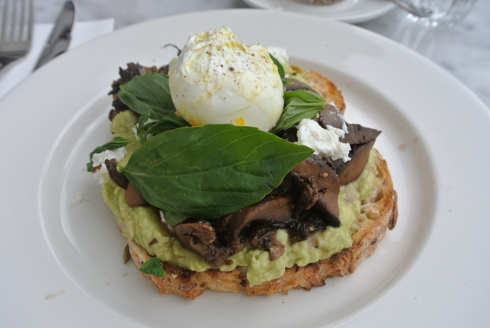 Poached egg, thyme buttered mushrooms, smashed avocado and basil