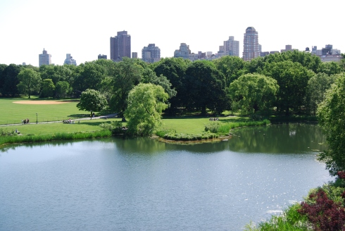 Central Park is truly breathtaking