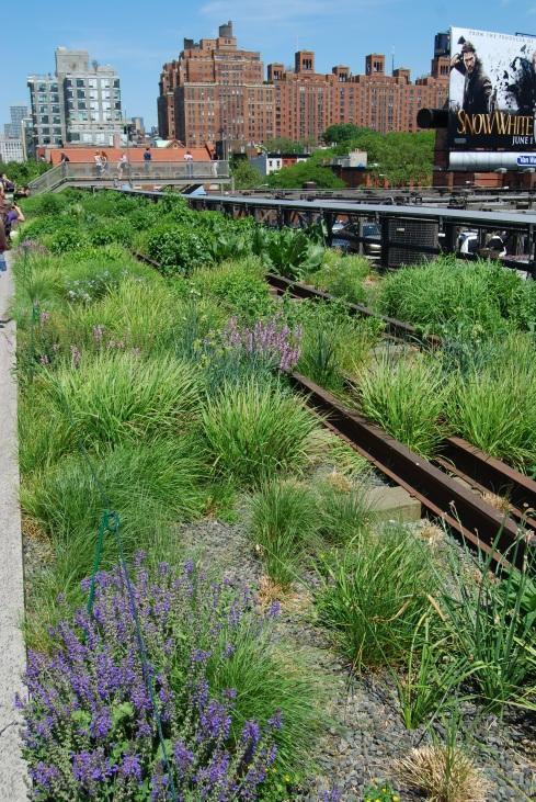 The High Line...a unique aerial park