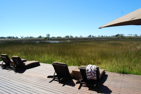 The view over the wetlands in Botswana
