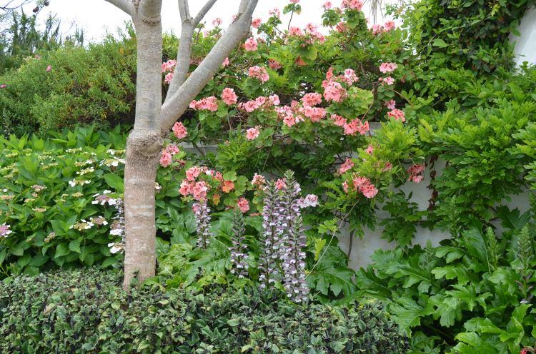 Voyager Estate Gardens